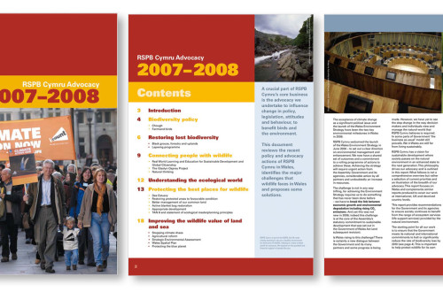 RSPB Advocacy Report 2007-8